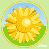 Picasa HD Lite